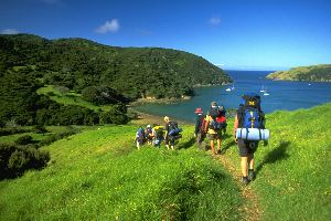 Hiking Bay Of Islands