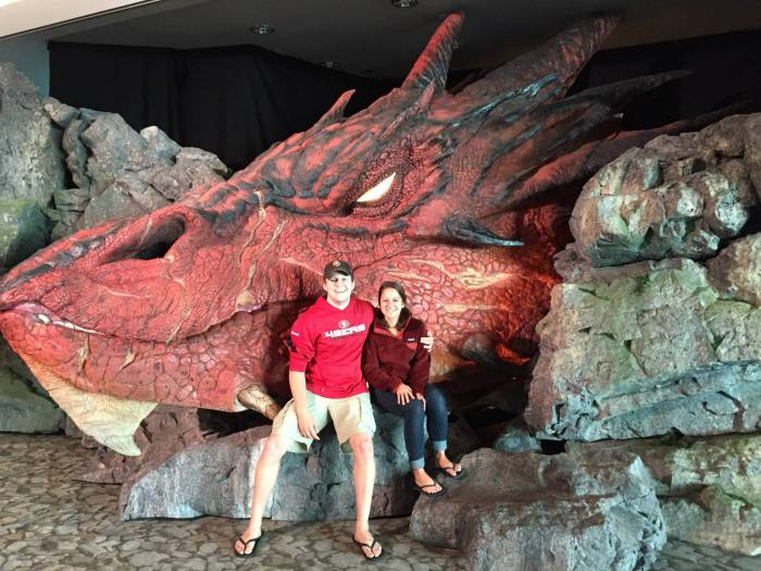 Smaug Head - Wellington Airport